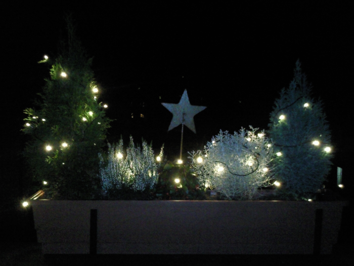 weihnachtliche balkonk sten little green planet. Black Bedroom Furniture Sets. Home Design Ideas