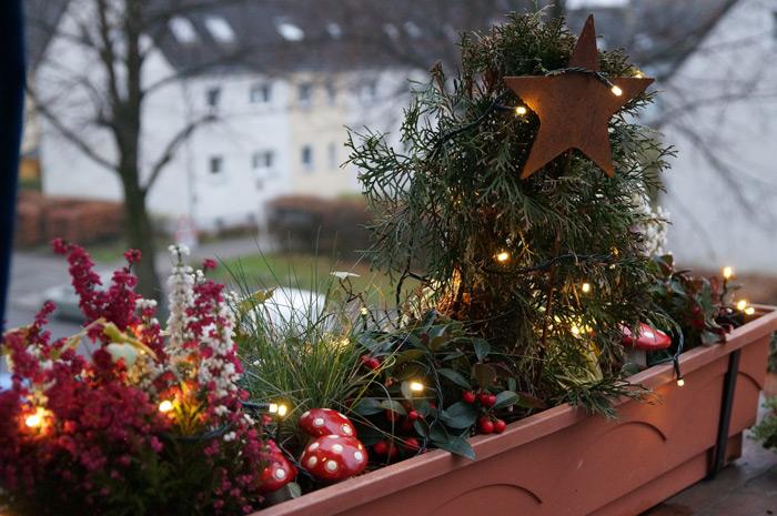 Weihnachtsdeko Für Balkonkästen.Weihnachtliche Balkonkästen 2012 Little Green Planet