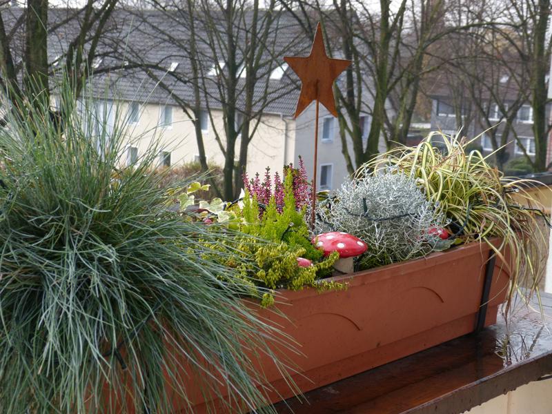 weihnachtliche balkonk sten 2013 little green planet. Black Bedroom Furniture Sets. Home Design Ideas
